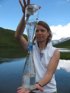 Dr. Anne Katharina Zschocke - Freie Fachdozentin